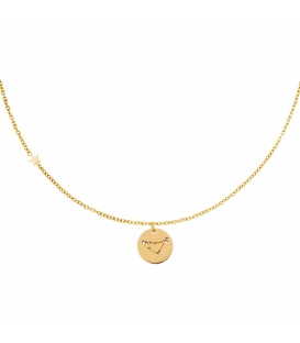 Goudkleurige halsketting met sterrenbeeld steenbok