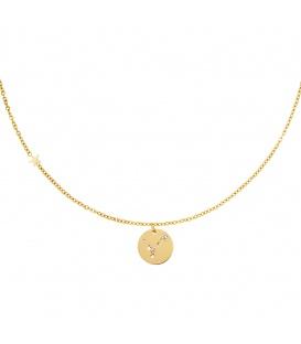 Goudkleurige halsketting met sterrenbeeld vissen