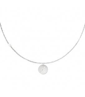 Zilverkleurige halsketting met sterrenbeeld stier