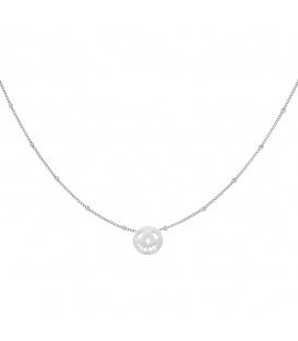 Zilverkleurige halsketting met een ronde pompoen